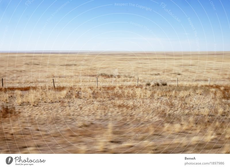 Train ride through the Mongolian steppe Nature Yellow Movement Loneliness Exotic Horizon Vacation & Travel Logistics Environment Far-off places China Gobi