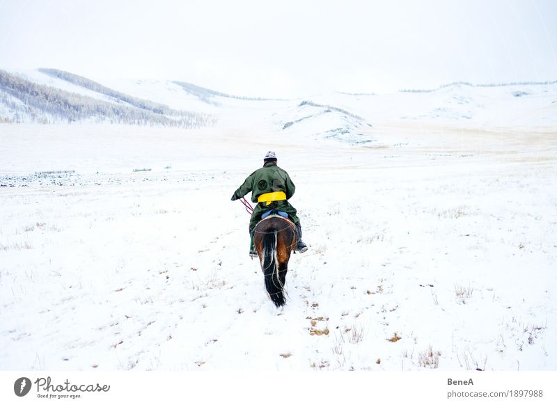 Man with horse in wintry steppe with snow, Mongolia Winter Adventure Loneliness Discover Freedom Mobility Nature Vacation & Travel Tradition Logistics