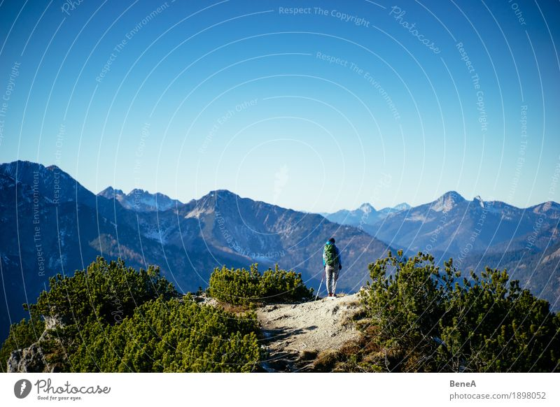 Hiking Bavarian mountains Human being Nature Discover Relaxation Leisure and hobbies Joy Horizon Lanes & trails Alpine Austria Germany Action Alps Blue Blue sky