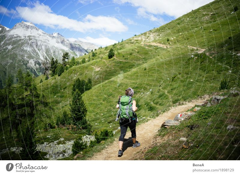 Human being Woman Nature Vacation & Travel Green Landscape Relaxation Loneliness Joy Mountain Adults Lanes & trails Sports Grass Going Leisure and hobbies