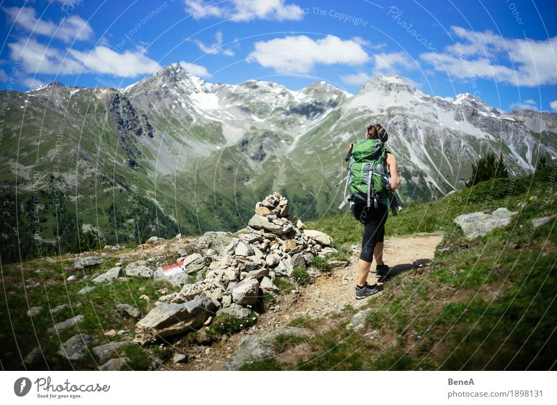 Woman with rucksack goes mountain hiking in Vinschgau, Italy Sports Human being Adults Nature Relaxation Fitness Leisure and hobbies Vacation & Travel Alpine