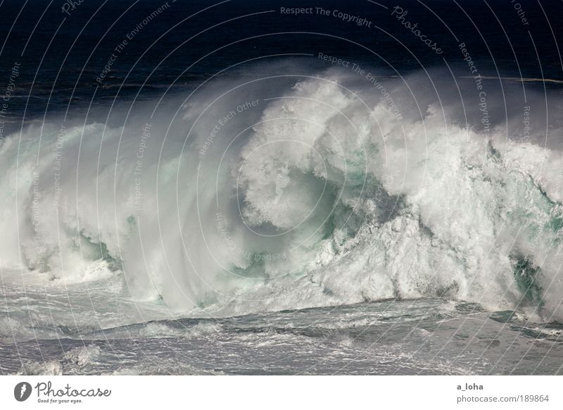 Nature Water Ocean Movement Coast Waves Power Tall Wet Large Exceptional Speed Elements Uniqueness Drop Fluid