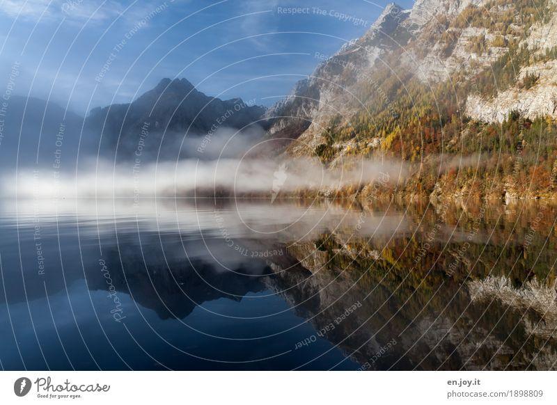 Enveloped Vacation & Travel Far-off places Nature Landscape Sky Autumn Fog Mountain Watzmann Peak Lakeside Lake Königssee Blue Sadness Grief Longing Wanderlust