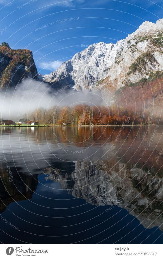 symmetry Vacation & Travel Tourism Trip Mountain Nature Landscape Cloudless sky Autumn Fog Forest Rock Alps Watzmann Berchtesgaden Alpes Lakeside Lake Königssee
