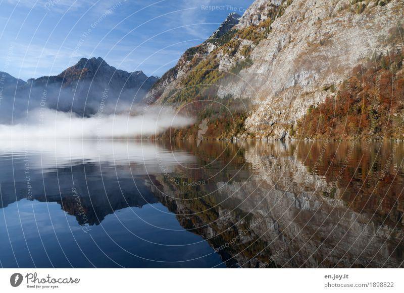 Invisible Vacation & Travel Tourism Trip Far-off places Mountain Nature Landscape Water Sky Autumn Fog Rock Berchtesgaden Alpes Lakeside Lake Königssee
