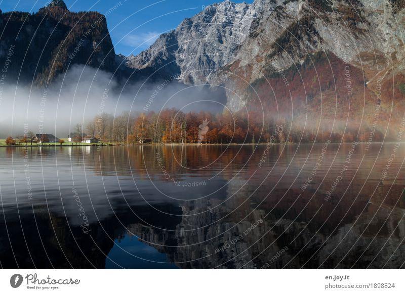 perfect weather Environment Nature Landscape Autumn Fog Rock Alps Mountain Berchtesgaden Alpes Watzmann Lakeside Lake Königssee St. Bartholomä Bavaria