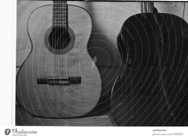 Music Wood Culture Concert Guitar Footbridge Musical instrument Song Acoustic Flamenco String instrument House mouse