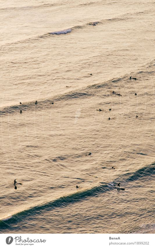 Surfing in Lima Joy Relaxation Sports Human being Freedom Leisure and hobbies Action Peru Sunset Surfer Aerial photograph Athlete Sportsperson To enjoy Dusk