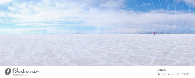 Woman walks over dry Uyuni salt lake in Bolivia Human being Adults Nature Experience Exotic Vacation & Travel Environment Far-off places Salt Lake