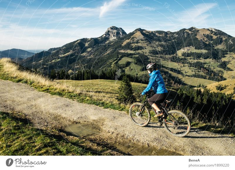Mountain bike rider at Sudelfeld with a view of Wendelstein Sports Woman Adults Nature Driving Fitness Experience Leisure and hobbies Joy Alpine Germany Action