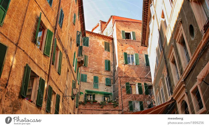 Houses in Siena, Italy Europe Town Downtown Deserted House (Residential Structure) Architecture Facade Window Shutter Brown Yellow Colour photo Exterior shot