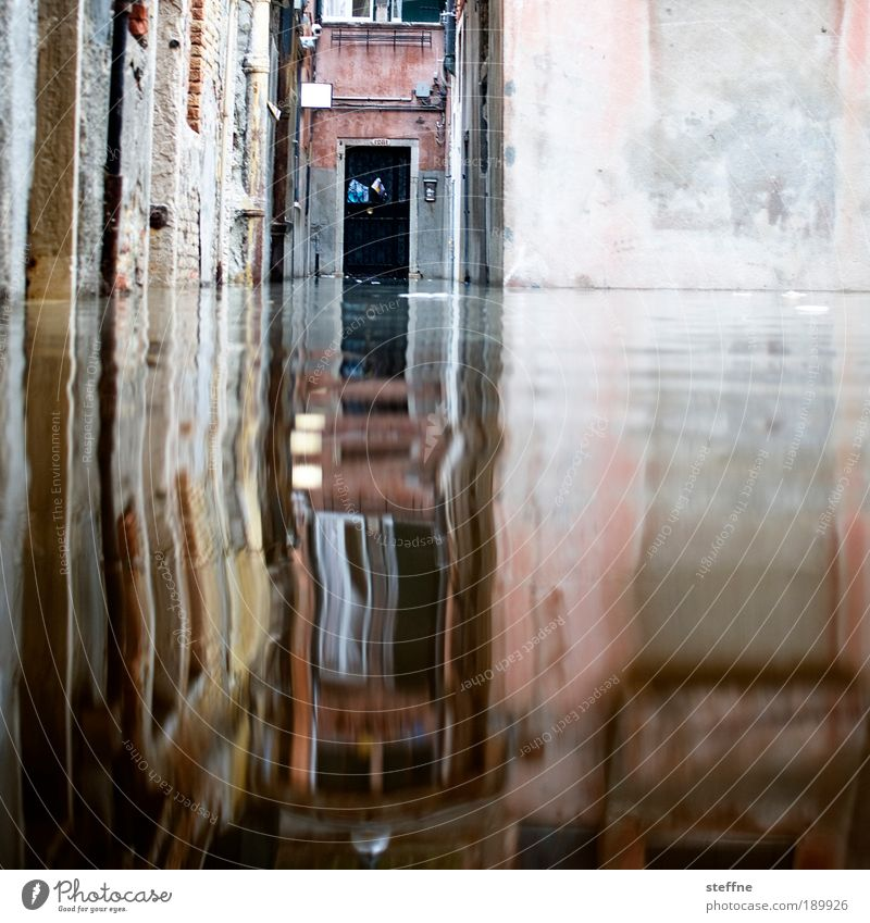acqua alta Water Venice Italy Wall (barrier) Wall (building) Door Exceptional Flood Deluge High tide Text space top right Colour photo Exterior shot Reflection