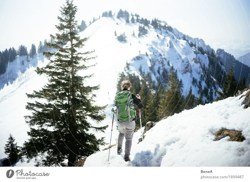 Woman hiking through the snow-covered Hochries mountain landscape Relaxation Vacation & Travel Winter Sports Adults Nature Fitness Movement Discover Experience