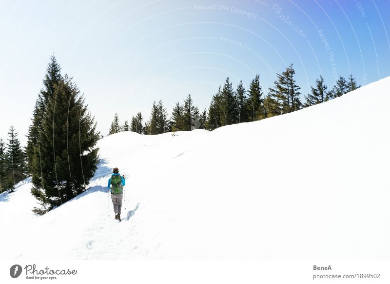 Woman hiking through the snow-covered Hochries mountain landscape Relaxation Vacation & Travel Winter Sports Adults Nature Fitness Adventure Discover Experience