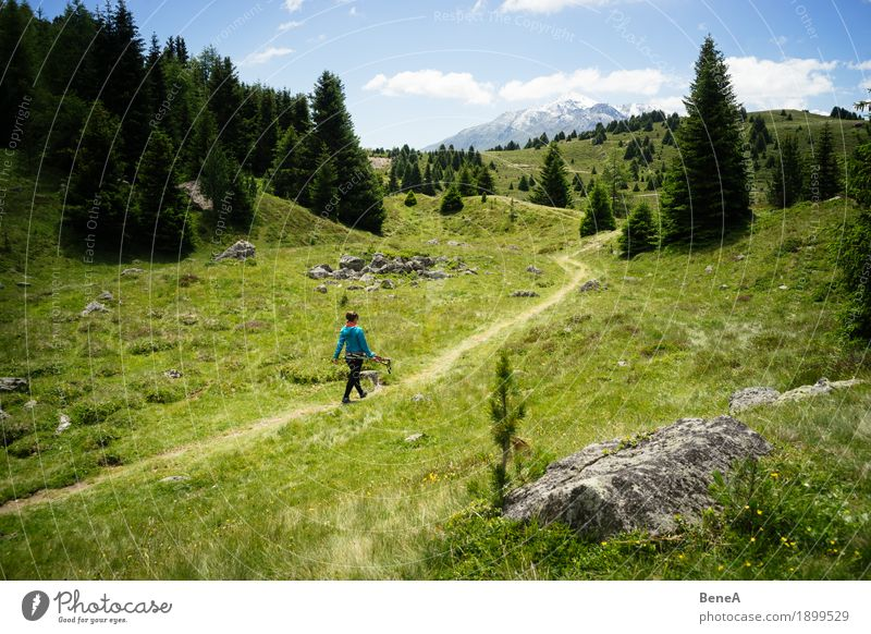 Woman wanders through the Plamorter Boden, Vinschgau, Italy Sports Human being Adults Nature Bog Marsh Going Hiking Relaxation Leisure and hobbies