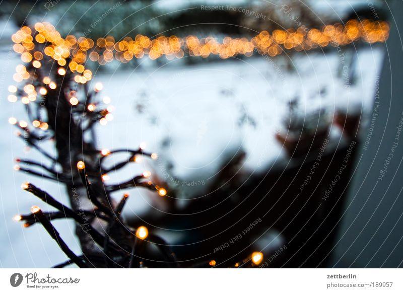 light chain Fairy lights pre-Christmas period Christmas decoration Tradition Light Decoration Jewellery Embellish Star (Symbol) Stars Anticipation Front garden