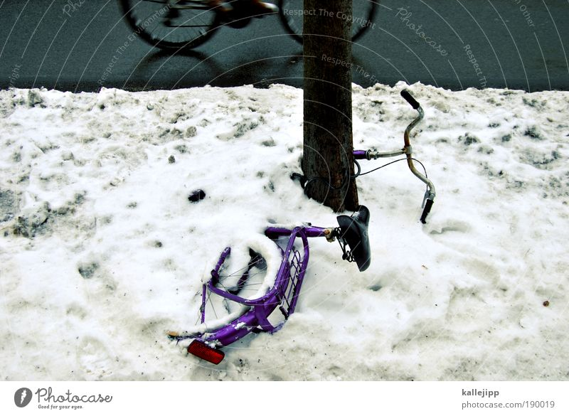 Tree Winter Environment Street Cold Snow Ice Bicycle Leisure and hobbies Dirty Climate Transport Speed Frost Lifestyle Driving