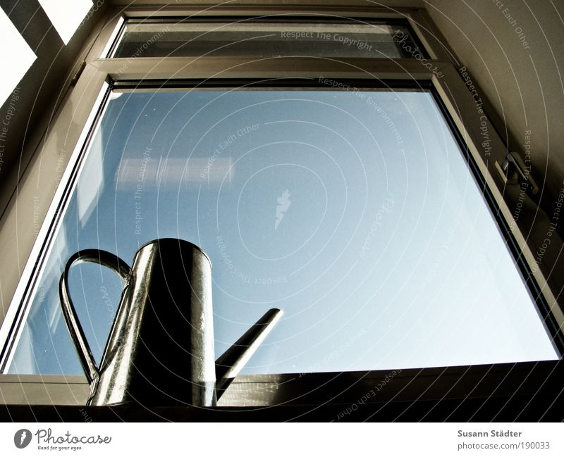 Sky Plant Loneliness Window Air Metal Flat (apartment) Empty Growth Living or residing Beautiful weather Window pane Blue sky Aluminium Glass Gießen