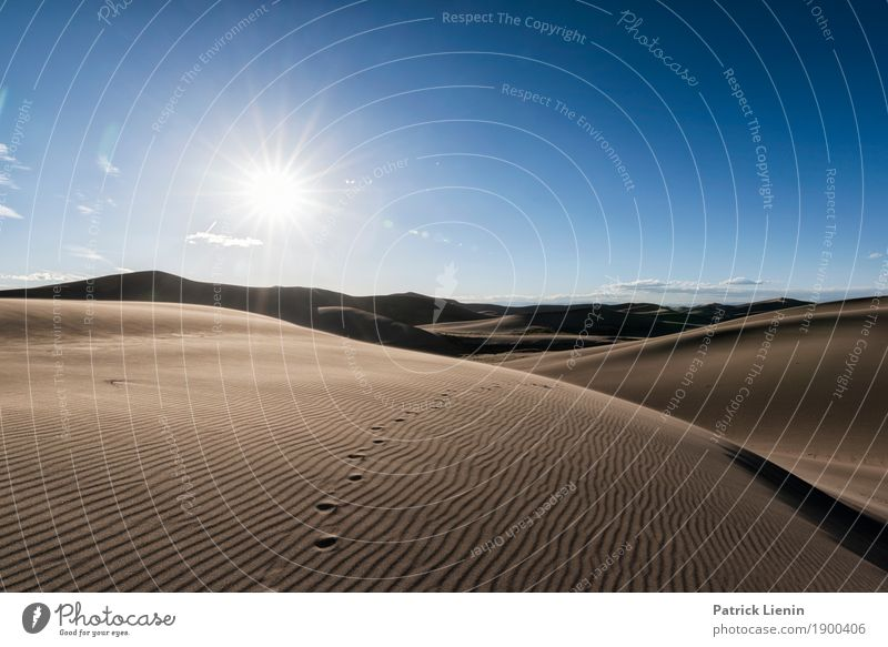 Great Sand Dunes National Park, Colorad Contentment Relaxation Calm Meditation Vacation & Travel Adventure Freedom Summer Environment Nature Landscape Sky