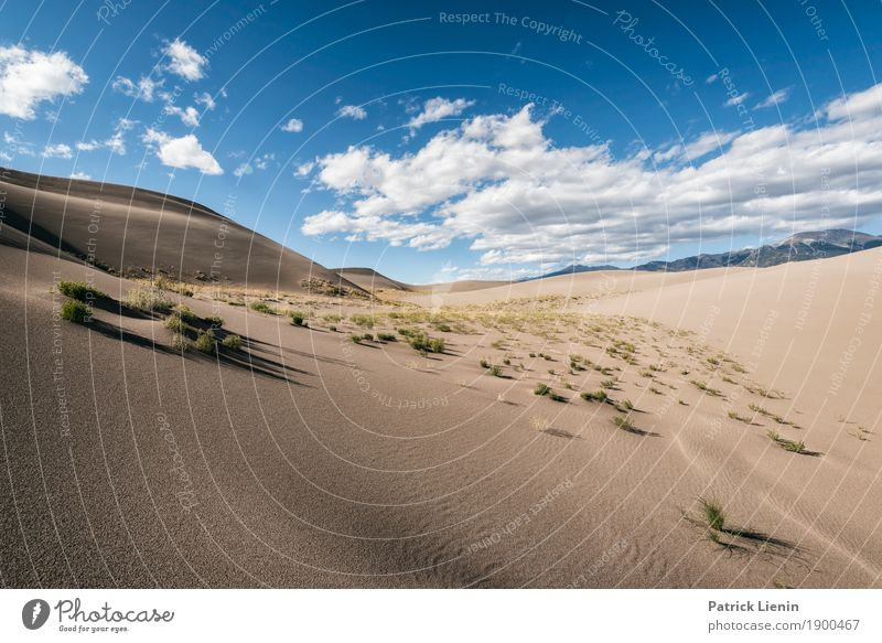 Great Sand Dunes National Park, Colorado Well-being Senses Relaxation Calm Vacation & Travel Trip Adventure Far-off places Freedom Expedition Camping Hiking