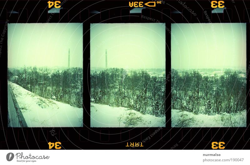 Nature Winter Forest Cold Park Landscape Weather Film Gloomy Climate Analog Chimney Time Repeating Symmetry Slide