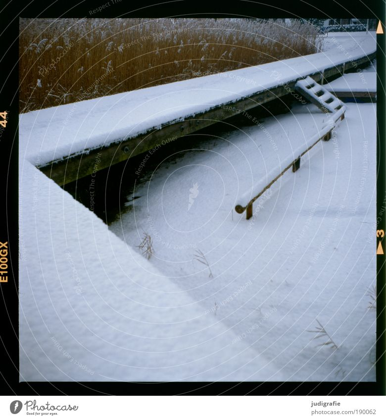 Nature Winter Vacation & Travel Calm Cold Snow Grass Lanes & trails Lake Landscape Ice Coast Weather Environment Stairs Climate