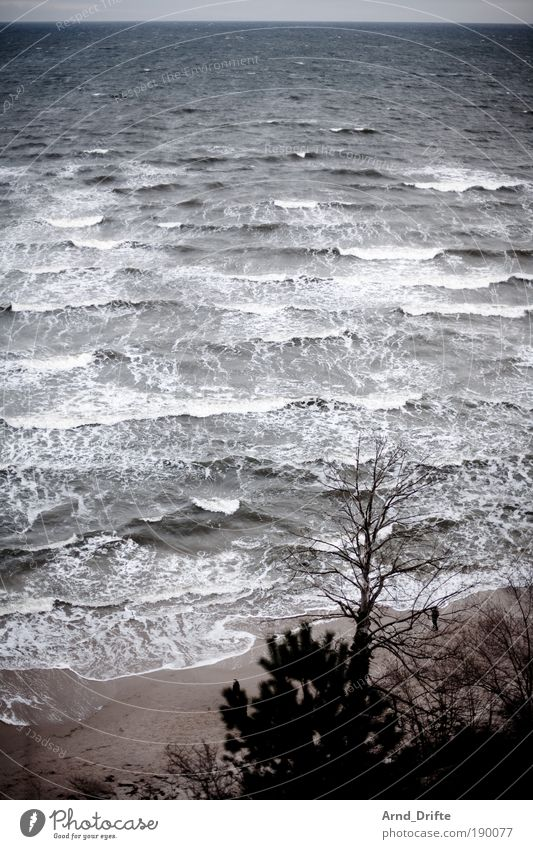 Nature Water Ocean Winter Beach Vacation & Travel Loneliness Far-off places Sand Landscape Waves Coast Wind Baltic Sea Wanderlust Cure