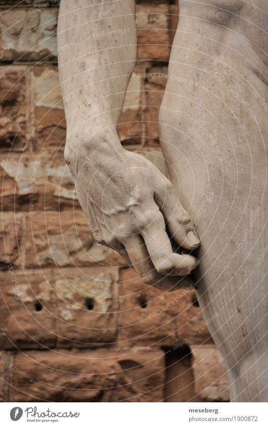 David's hand Art Work of art Sculpture Tourist Attraction Landmark Stone Culture Colour photo Exterior shot