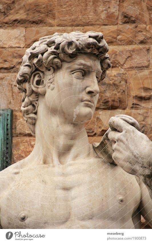 Michelangelo's David Art Work of art Sculpture Florence Italy Europe Downtown Tourist Attraction Landmark Stone Culture Tourism Colour photo Exterior shot