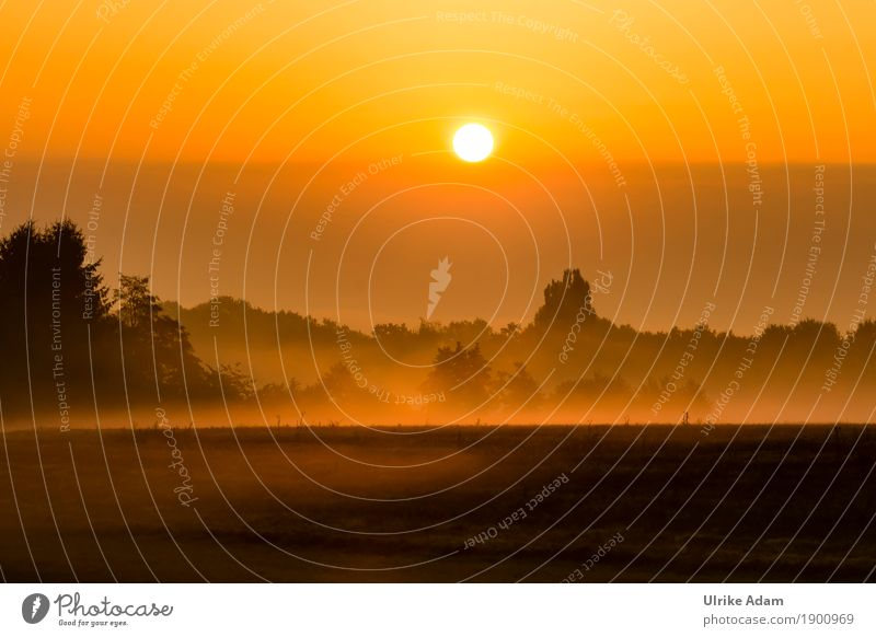 September Fog Style Design Arrange Interior design Decoration Wallpaper Image Card Poster Nature Landscape Sky Sun Sunrise Sunset Autumn Winter Meadow Field