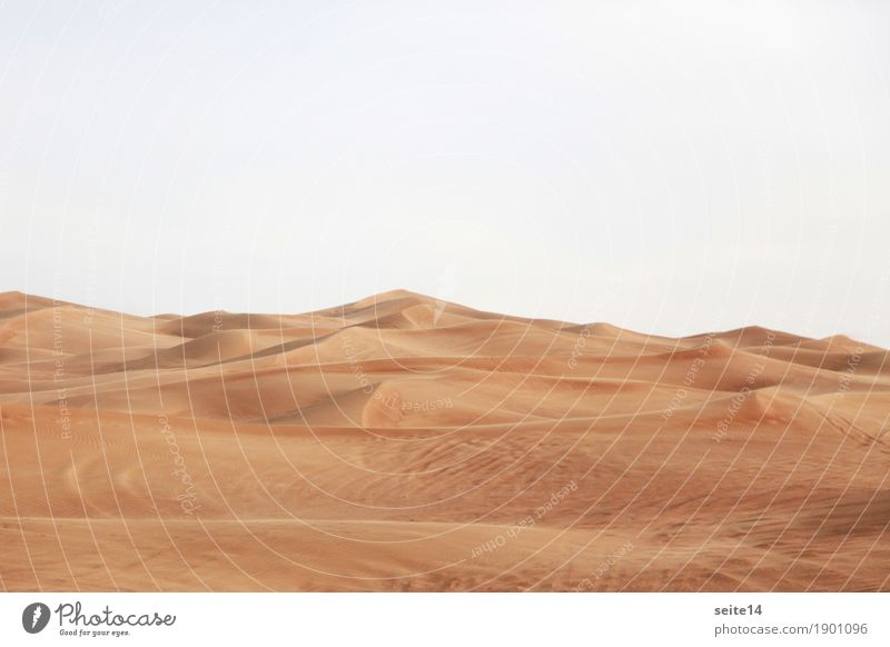 Sky Vacation & Travel Travel photography Warmth Sand Copy Space Trip Car Hiking Adventure Change Desert Tracks Hot Dune Africa