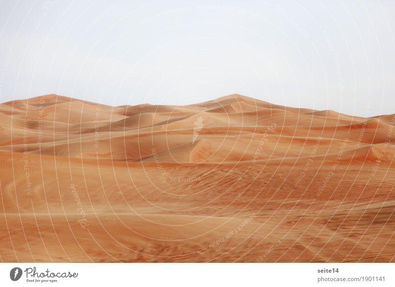 Sand Dune, Sand Dune, Desert Beach dune Warmth Hot Climate change Dubai Abu Dhabi United Arab Emirates Hiking Change Hiking trip Expedition Trip