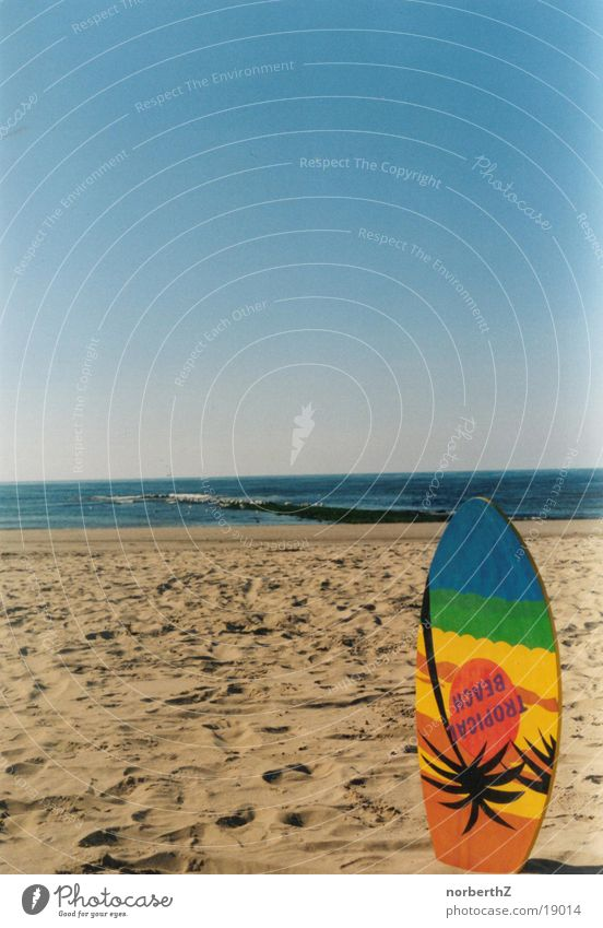 Skimboard on the beach Beach Vacation & Travel skiboard Sports Relaxation Blue Sky Sand