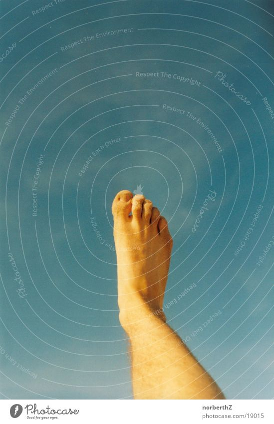 foot in the sky Outstretched Toes Human being Feet Sky Bright Blue Legs Barefoot