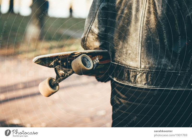 Longboarder at sunset Human being Masculine Young man Youth (Young adults) Youth culture Skateboard Jacket Leather Utilize Driving To hold on Fitness Sports