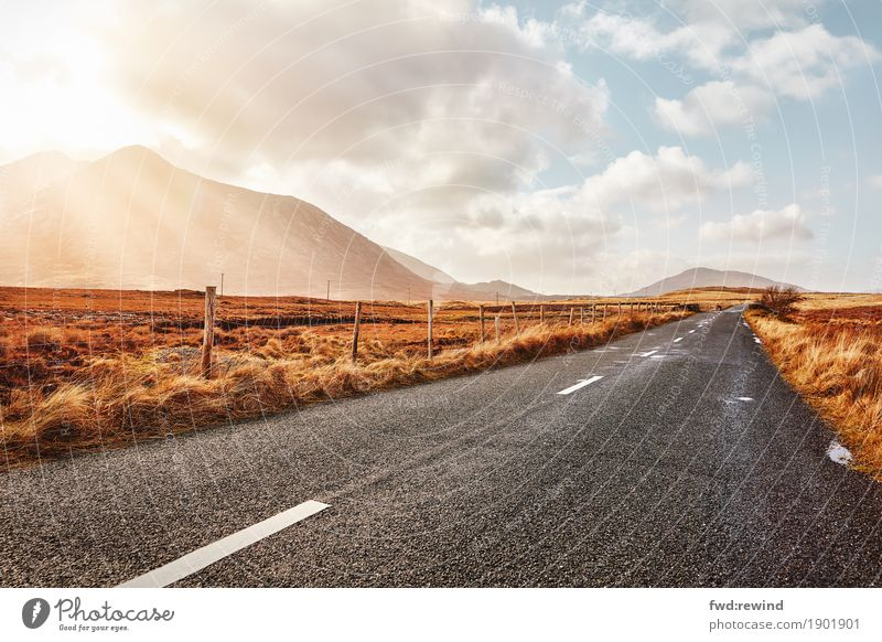 Long road ahead Joy Happy Vacation & Travel Tourism Trip Adventure Far-off places Freedom Sun Hiking Nature Landscape Clouds Sunlight Spring Summer Autumn