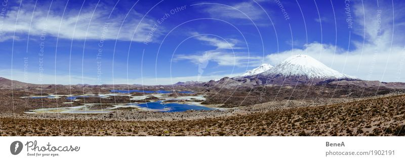 Panorama with Laguna Cotacotani and volcano Parinacota in Chile Nature Large Infinity Natural Wild Exotic Vacation & Travel Environment Environmental protection