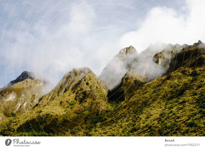 Peaks of green mountains in the Andes between clouds Adventure Expedition Mountain Hiking Climbing Mountaineering Environment Nature Landscape Plant Clouds