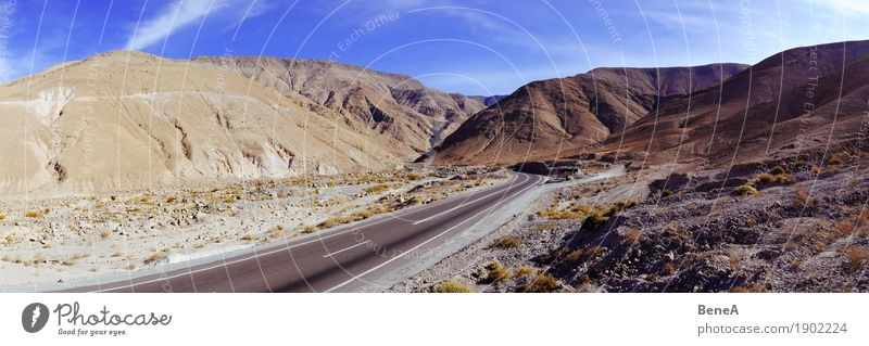 Pass road through the landscape of the Atacama Desert Vacation & Travel Adventure Far-off places Expedition Nature Landscape Cloudless sky Beautiful weather