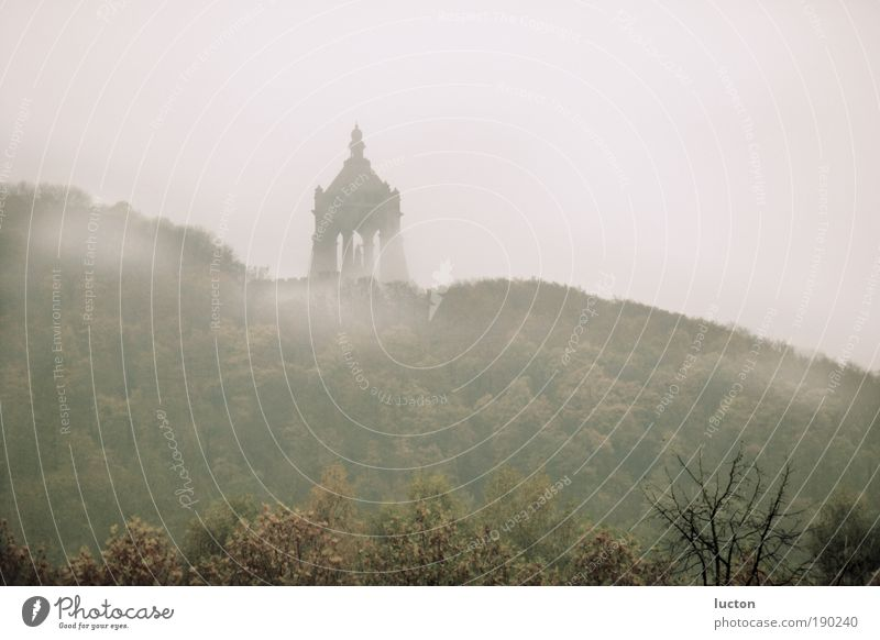 Nature Tree Clouds Forest Autumn Gray Landscape Brown Fog Hill Monument Landmark Tourist Attraction North Rhine-Westphalia