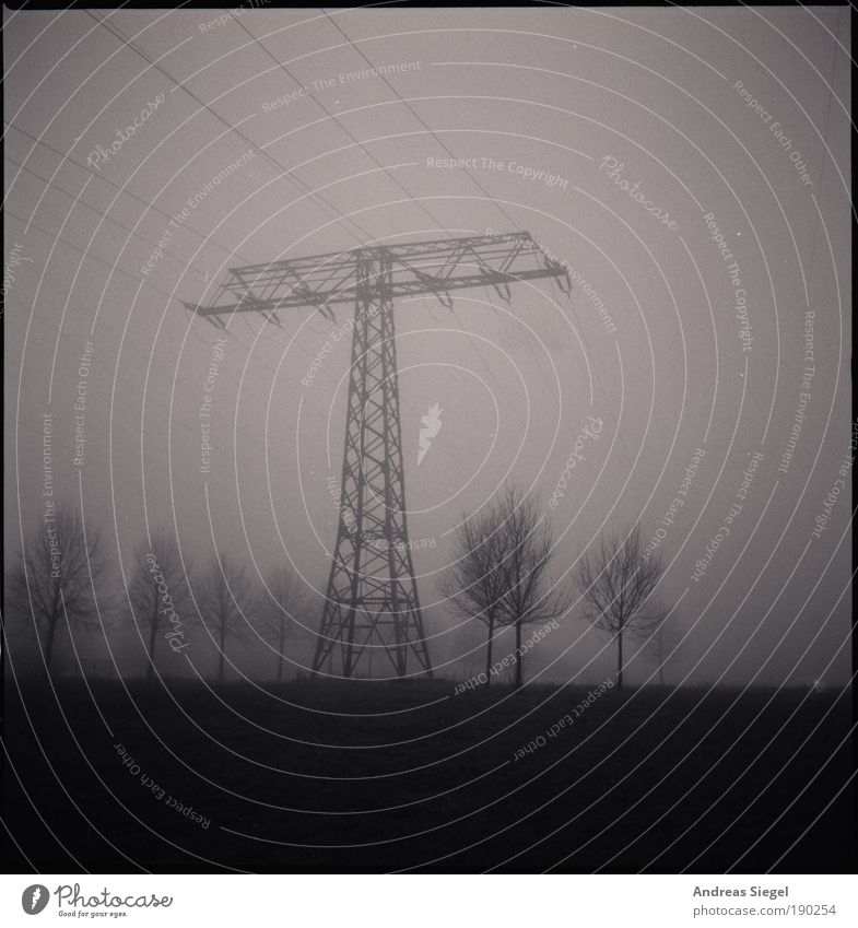 New Year's morning Technology Energy industry High voltage power line Electricity pylon Environment Nature Landscape Winter Climate Weather Bad weather Fog Tree