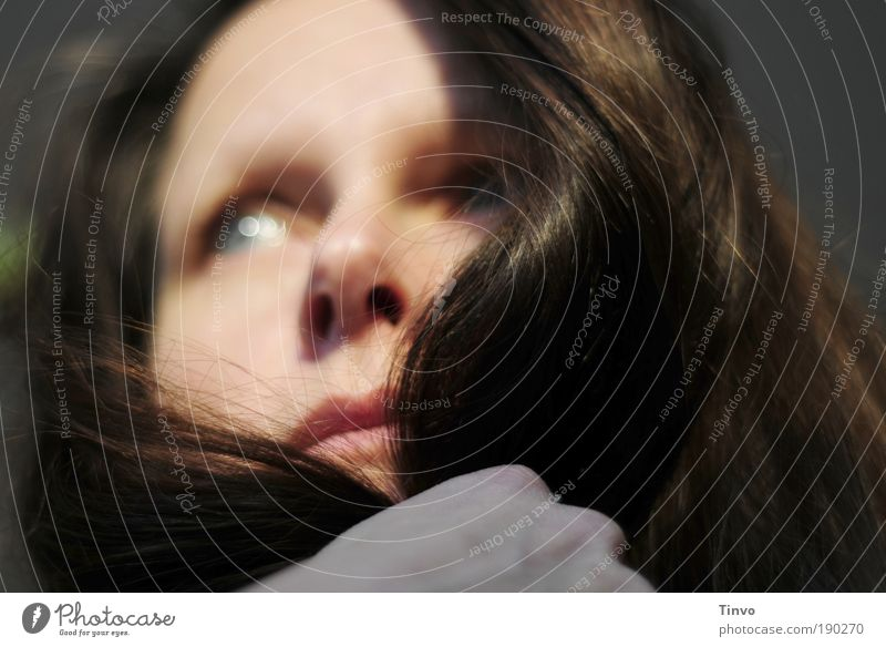 Both Sides Now Feminine Woman Adults Head Hair and hairstyles Face 1 Human being Brunette Long-haired Emotions Moody Contentment Secrecy Longing Experience