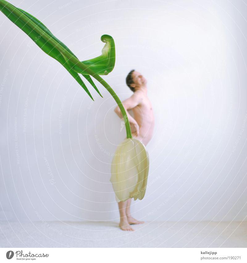 Human being Man White Flower Life Naked Feminine Spring Bright Dance Art Body Funny Skin Adults Masculine