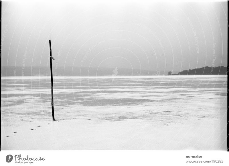 winter grey Senses Relaxation Calm Fishing (Angle) Winter Winter vacation Hiking Nature Landscape Water Horizon Climate Ice Frost Snow Coast Lakeside River bank