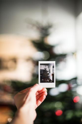 in memoriam Christmas & Advent Hand Polaroid Picture-in-picture Christmas tree Christmas decoration To hold on Emotions Moody Anticipation Nostalgia Memory