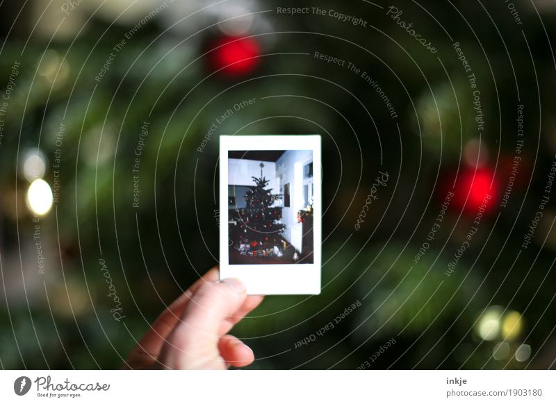 just to remind you. Living or residing Christmas & Advent Hand Christmas tree Polaroid Picture-in-picture Photography To hold on Anticipation Tradition Indicate