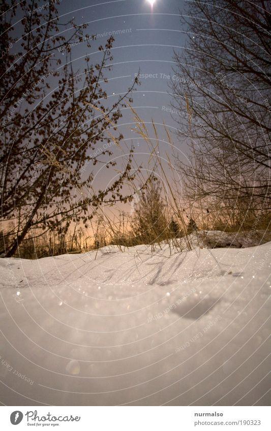 Nature Sky Winter Calm Cold Snow Style Grass Garden Landscape Ice Field Art Stars Glittering Esthetic
