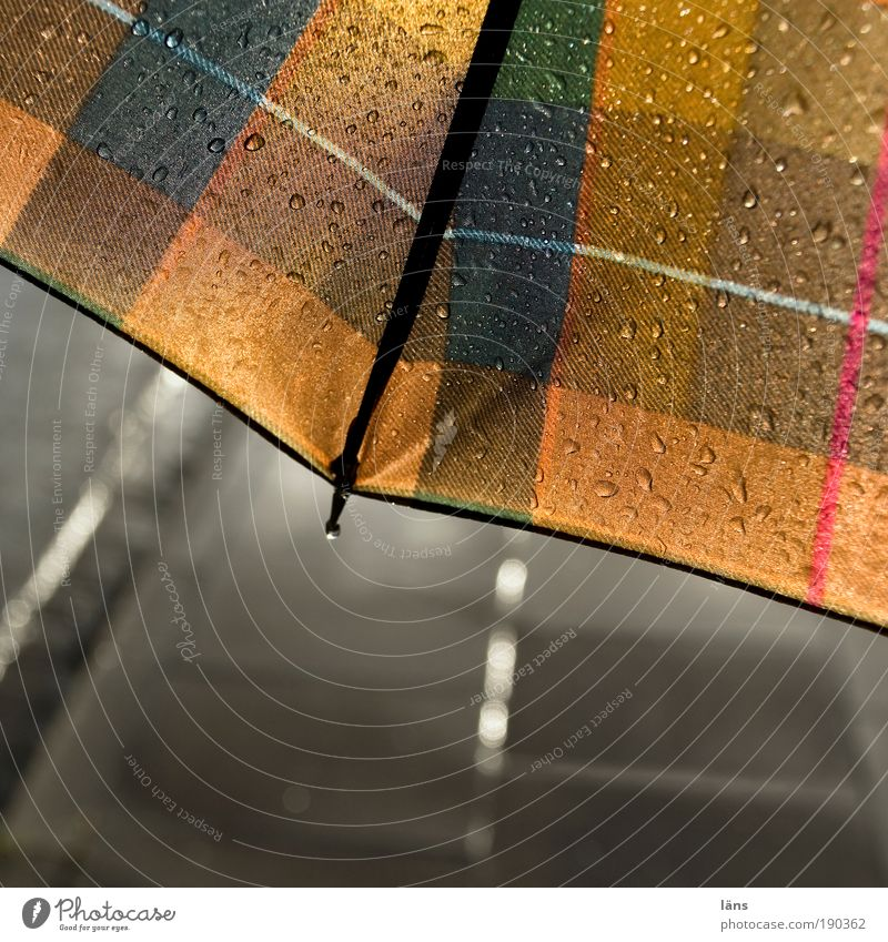 Street Lanes & trails Rain Glittering Going Drops of water Wet Stand Protection Umbrella Sidewalk Traffic infrastructure Damp Footpath Weather Checkered