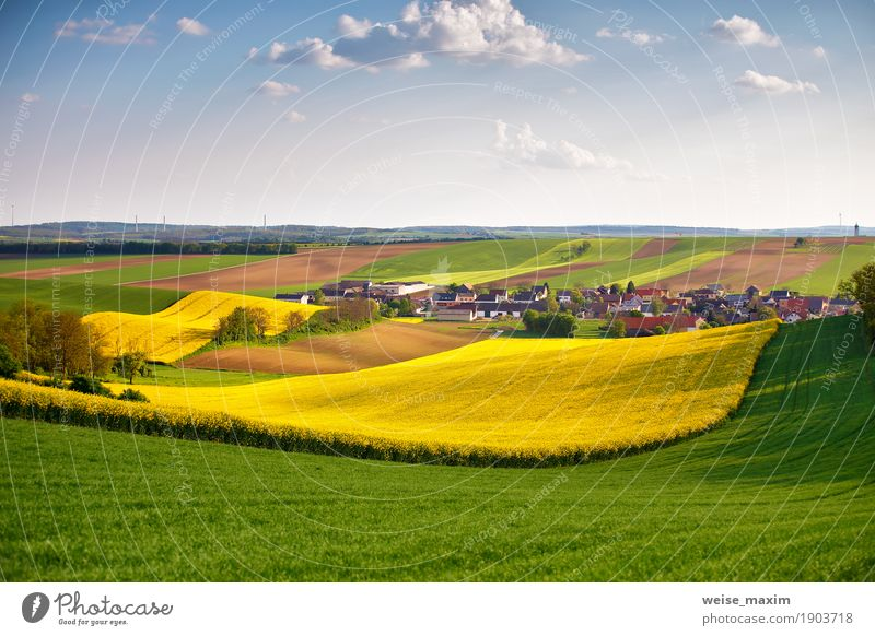 Austria spring green and yellow colza fields. Village on hills. Sky Nature Vacation & Travel Plant Summer Green Flower Landscape Clouds