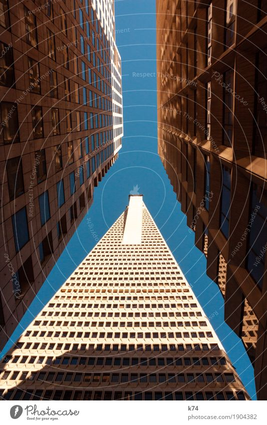 San Francisco Days | Financial District Sky Cloudless sky Town Downtown High-rise Bank building Architecture Window Concrete Glass Large Tall Blue Gold Narrow